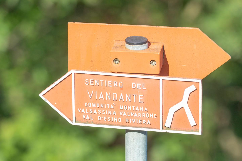 sentiero nei pressi di Biosio